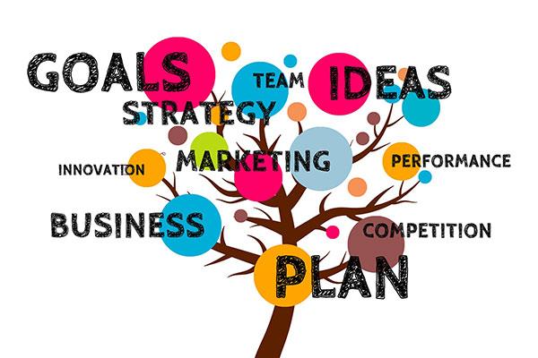 管理项目团队的工具和技巧